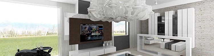 nowoczesny projekt wnętrza salonu